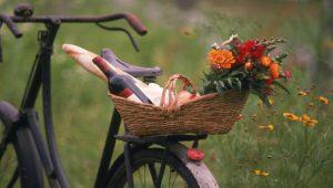 __Natura_fiori_bici